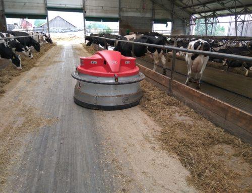 Премиксы для крупного рогатого скота периода сухостоя и лактации всегда в наличии на складе в г. Самара