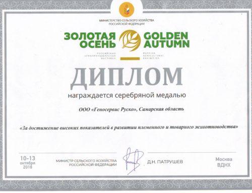 Племпредприятие «Геносервис Руско» награждено серебряной медалью на выставке «Золотая осень 2018»