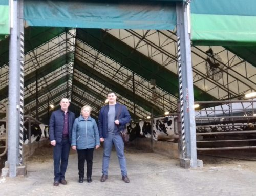 Стажировка на молочных фермах Чехии cо 2 по 9 апреля 2019 года